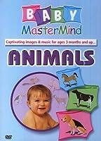 Baby Mastermind: Animals