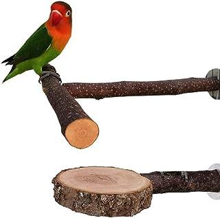 Nynelly 2pcs Perchoirs en Bois Naturel pour Perroquet,T Supporter Perchoirs en Bois Naturel,Cercle Perchoirs interactifs p...