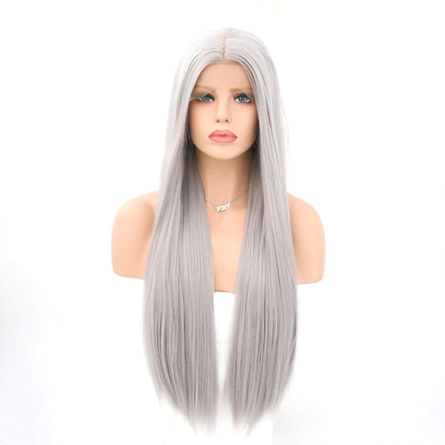 騒ぎ感心する破壊Koloeplf 女性用フロントレース化学ファイバーウィッググレーカラーストレートヘアウィッグ