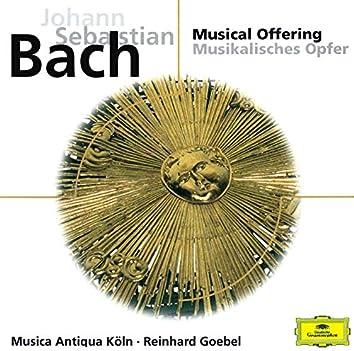 Bach, J.S.: Musical Offering; Harpsichord Sonata No.2 etc.