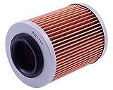 HIFLOFILTRO HF152-Filtro de aceite Aprilia Tuono 1000 R Factory RR100 2007- 2011 139