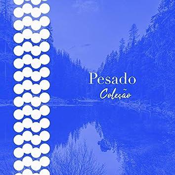 # 1 A 2019 Album: Pesado Coleção