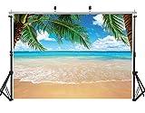 AIIKES 7x5FT/2,1Mx1,5M Sommer Tropisch Strand Hintergrund Meer Insel Bäume Fotografie Hintergrund...