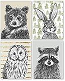 Confetti Fox Woodland Nursery Wall Decor, Boys Teddy Bear Room Girls Bedroom, Forest Animals Art Posters, Toddler Kids Watercolor Paintings, Baby Bunny Owl Raccoon (8x10 Unframed Set of 4 Prints)