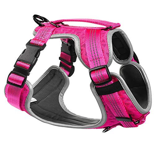 Embark Sports Dog Harness, Light and Breathable Design - Easy On and Off, No Pull Training, Size Adjustable, Non Choke with Handle for Control (Large, Pink)