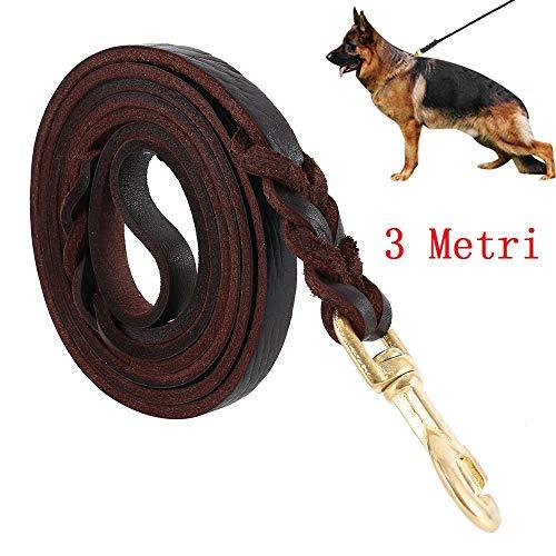 Dandelionsky Hundeleine für Hunde, geflochten, aus Leder, verstellbar, für Hunde oder Mittel, verstellbar