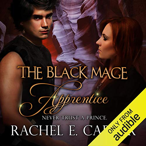 Apprentice audiobook cover art