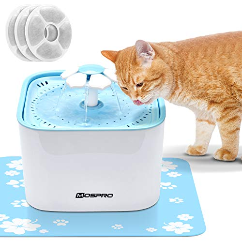 Automatic Birds Water Bowl