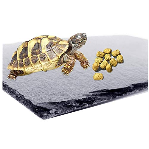 Fbaby Reptile Basking Platform Tortoise Rock Plate Turtle Bathing Area Feeding Food Dish Resting Terrace Grinding Nail Landscape Habitat Decor for Turtle Lizard Bearded Dragon Crested Gecko Snake