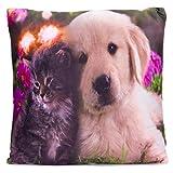 Nexos Trading LED Kissen Sofakissen mit Beleuchtung Fotodruck Hund & Katze 38 x 38 cm Zierkissen Dekokissen mit Licht Leuchtkissen süße schmusende Welpen samtweich