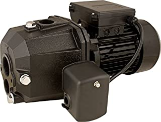 Star SJ10 1 HP Cast Iron Convertible Jet Pump with Injector Kit for Deep or Shallow Wells, Dual Voltage Motor