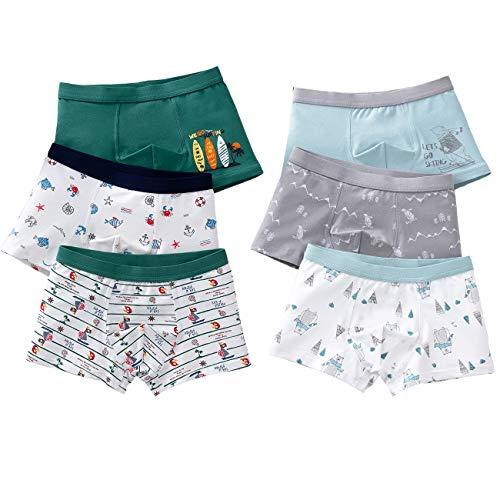 LeQeZe 6 Pack Kinder Jungen Boxershorts Unterwäsche Slips Junge Boxer Unterhose Baumwolle Schlüpfer 2-11 Jahre Größe 86-146 (Jungen Unterhose 6 Pack/05, 10-11Jahre)