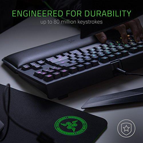 Razer BlackWidow TE Chroma v2 TKL Tenkeyless Mechanical Gaming Keyboard: Green Key Switches - Tactile & Clicky - Chroma RGB Lighting - Magnetic Wrist Rest - Programmable Macros - Classic Black