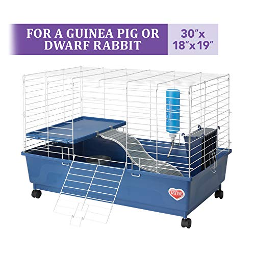 Kaytee Deluxe 30 X 18 2 Level Guinea Pig Cage Guinea Pig