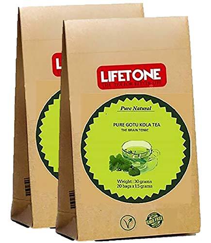 Gotu Kola Tee | 100% rein vom Regenwald | Speicherfokus | 40 Teebeutel | Tee studieren