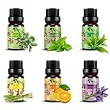 Set de aceites esenciales,100% Natural Puro Aromaterapia Aceite Aromático