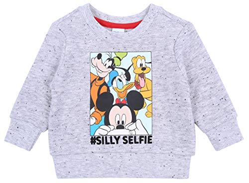 sarcia.EU Sweatshirt Gris Mickey Mouse & Friends 6-9 Mois