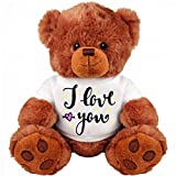 Teddy Bear Couple Gift: Funny 13 Inch Teddy Bear Stuffed Animal : I Love You : Romantic Gift : Best Couple Gift