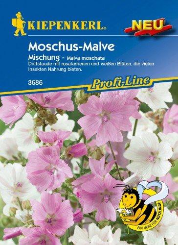 Moschus-Malven-Mix
