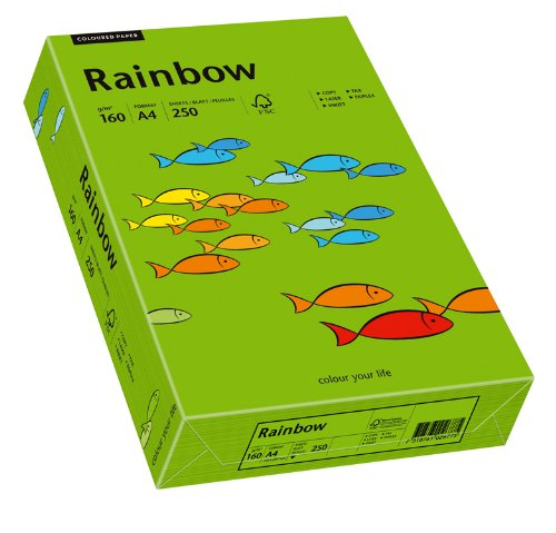 Papyrus 88042681 Drucker-/Kopierpapier farbig: Rainbow 160 g/m² A4 250 Blatt, Buntpapier matt, intensivgrün