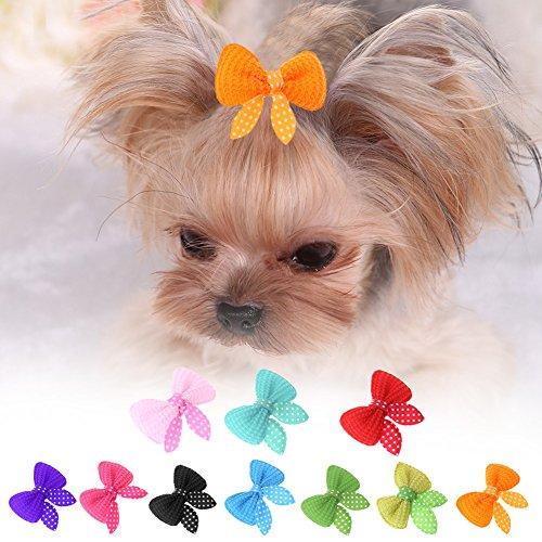 Ahomi - 10 Piezas de Horquillas para el Pelo para Mascotas, Perros, Gatos, Belleza, Lazos