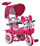 Amardeep and Co Baby Tricycle with Parental Control, Pink