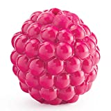 Planet Dog Orbee-Tuff Raspberry Treat-Dispensing Dog Chew Toy