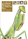 Mantis religiosa (Animales)