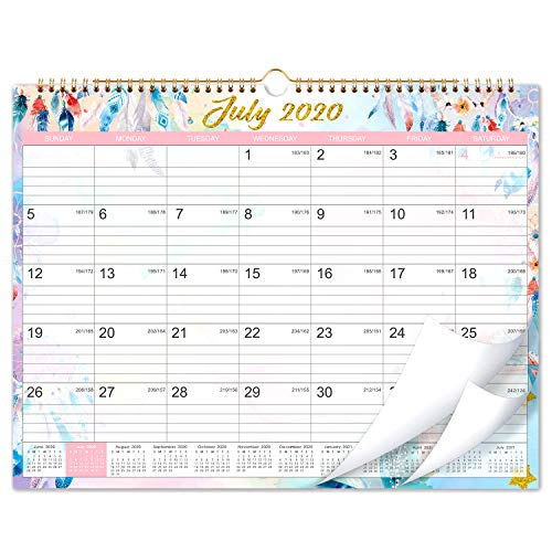 2020-2021 Calendar - 18 Months Wall Calendar 2020-2021, 15 x 11.5, Jul 2020-Dec 2021, Flexible, Colorful Monthly Calendar Perfect for School, Office & Home Planning and Organizing