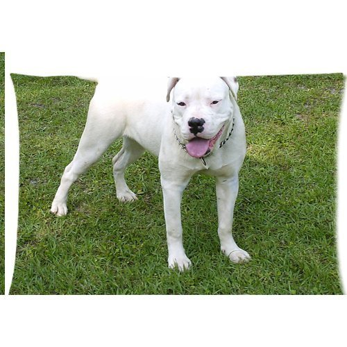 american white bulldog Zippered Pillow Cases Cover 20x30 Inch by Honest Kind