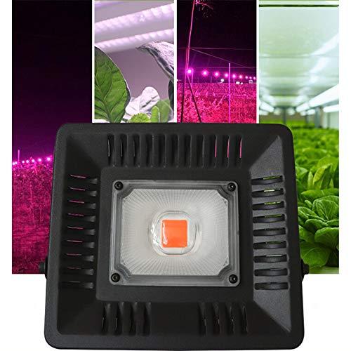 Metermall Lights For LED Full Spectrum Plant Growth Lamp 50W IP65 220V Euro Regulation
