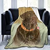 Yulimin Chocolate Art Dad Labrador Full Fleece Throw Cloak Wearable Blanket Nursery Bedroom Bedding Decor Decorations Queen King Size Flannel Fluffy Plush Soft Cozy Comforter Quilt