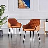 2X Esszimmerstuhl Sessel Wohnzimmerstuhl aus Stoff (Samt) Farbauswahl Retro Design Armlehnstuhl Stuhl mit Rückenlehne Sessel Metallbeine Schwarz (Orange, 2)
