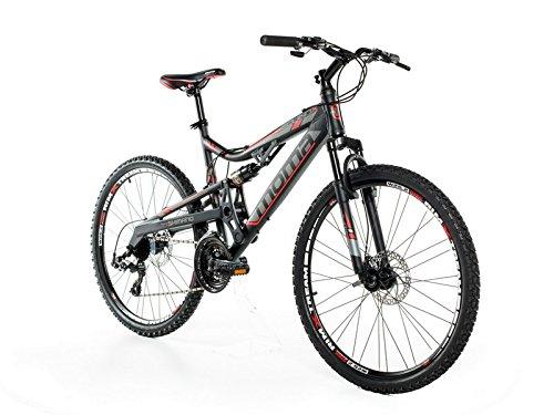 Trekking E-Bike Moma Bikes Equinox 26 rad Bild 2*