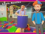 Blippi Playing at a Play Place - Learning about Colors and Muscles for Kids