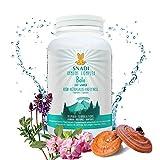 Capsulas vegetales BALA de Reishi, Astragalo y Pau d'Arco I 120 capsulas - 600 mg I Estimula el sistema inmune, las defensas y proporciona fuerza y energía.