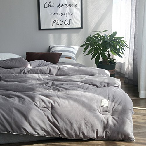 MMM Quilt Thicker Keep Warm Winter Broderie Quilt Core Student Double coton individuel Spring And Autumn Bedding (taille : 200 * 230cm(3.5kg))