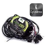 KIT Ethanol Flex Fuel - E85 - Bioethanol - 4 cylindres + Interface de Diagnostic ELM327 USB....