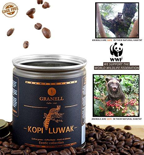 Cafés Granell Wild Kopi Luwak Coffee Whole Beans, 100grams (3.5oz)