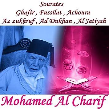 Sourates Ghafir , Fussilat , Achoura , Az zukhruf , Ad Dukhan , Al Jatiyah (Quran)