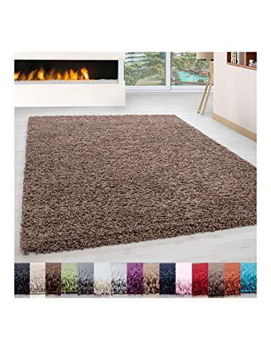 Carpet 1001 Pelo Largo Peluda Shaggy Sala de Estar Alfombra de Diferentes Tamaños y Colores - Mocca, 300x400 cm
