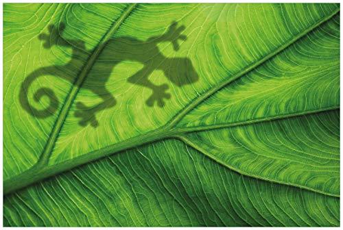 Wallario Acrylglasbild Gecko Schatten auf grünem Blatt - Umriss - 60 x 90 cm in Premium-Qualität: Brillante Farben, freischwebende Optik
