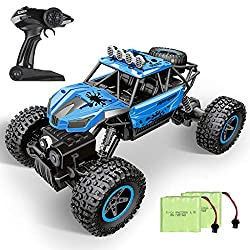 which is the best rc cars in the world