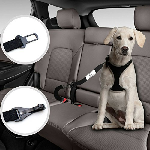 Barktus Dog Seat Belt for Harness with Two Pet Cat Car Safety Leads Heavy Duty Leash Extensions, Dual Adjustable Vehicle Tether Tangle-Free Swivel Latch Bar Attachment Seatbelt Carabiner Clip