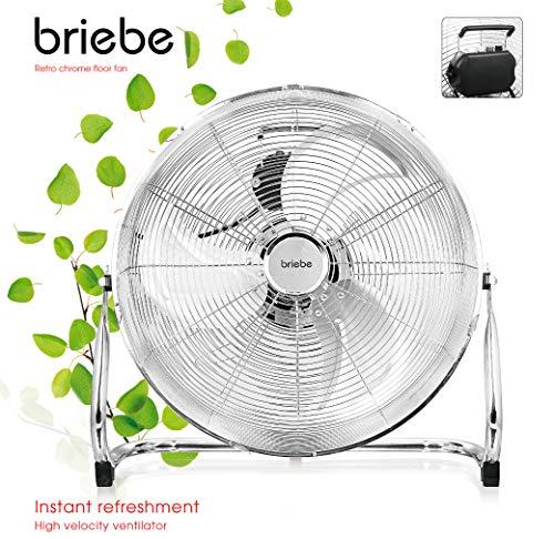 briebe BRI-FN123149