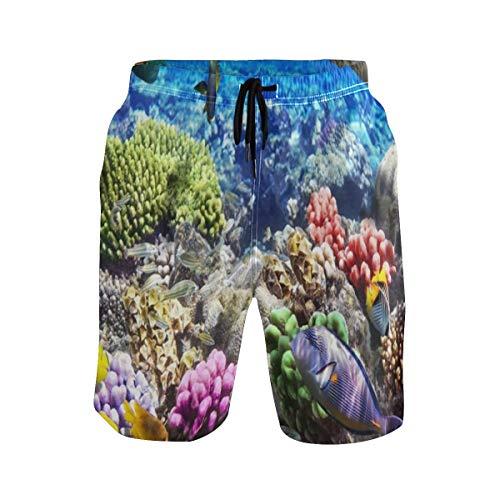 LISNIANY Badehose für Herren,Lot Hurghada Riff Korallenfisch Rot Ägypten Tiere Tierwelt Natur Ozean Aquarium Hawaii Under Wate,Badeshorts für Männer Surfen Strandhose Schwimmhose(XXL)