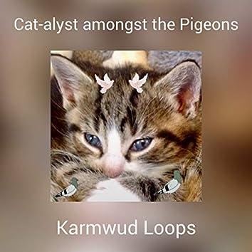 Cat-alyst amongst the Pigeons