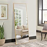 NeuType Full Length Mirror Dressing Mirror 65'x22' Large Rectangle Bedroom Floor Standing Mirror Wall-Mounted Mirror Standing Hanging or Leaning Against Wall Aluminum Alloy Thin Frame (65'x22', Gold)