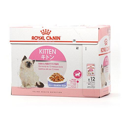 Royal Canin, Feline Health Nutrition Kitten Instinctive, mangime per cuccioli di gatto in gelatina, 12 x 85 g (etichetta in lingua italiana non garantita)