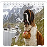 Animal Dog Shower Curtains, Alpine Rescue Dog Neck with A Small Barrel, Lovely St. Bernard Bath Curtain, Polyester Fabric Bathroom Curtain with 12 Hooks, 69X70 Inches